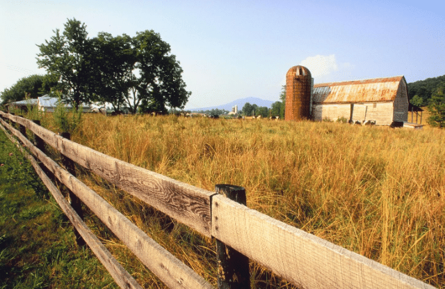 Homestead in the country