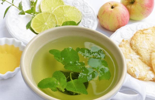 Lemon Balm being made into tea