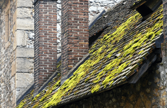 An older roof