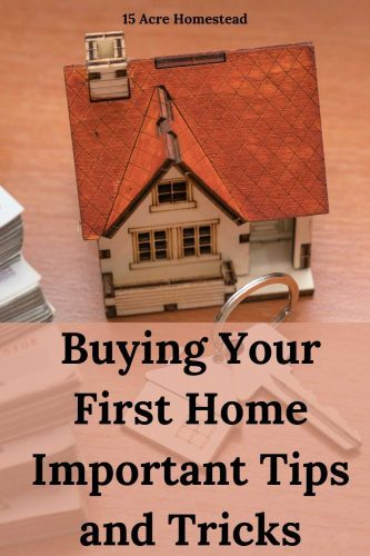 If you are looking to buy your first home, this post should help you with how to go about making the process smooth and stress-free.