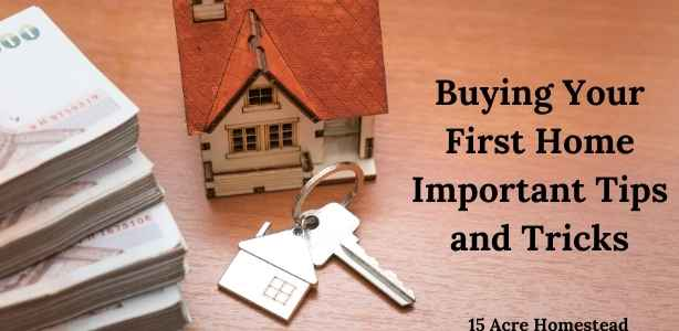 buying your first home featured image