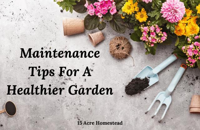 Healthier garden featured image