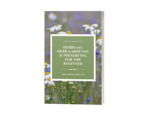 Herbs 101 Ebook