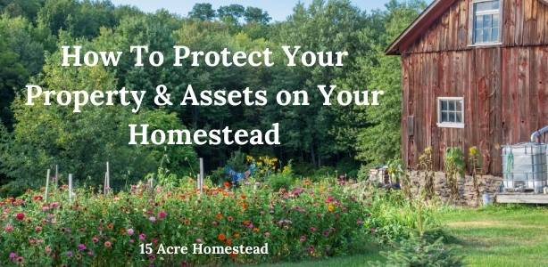 Protect your property featured image