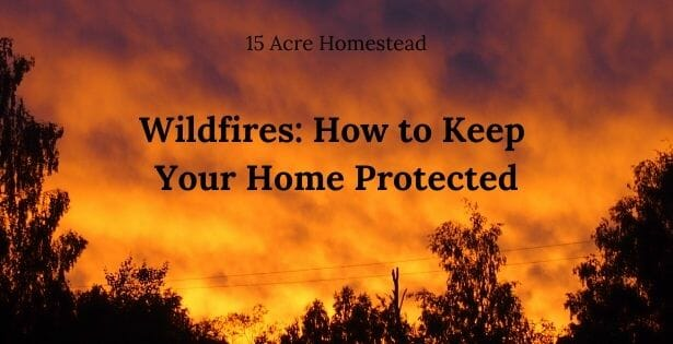 Wildfires featured image