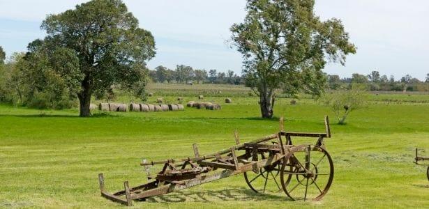 antique farm equipment in a field