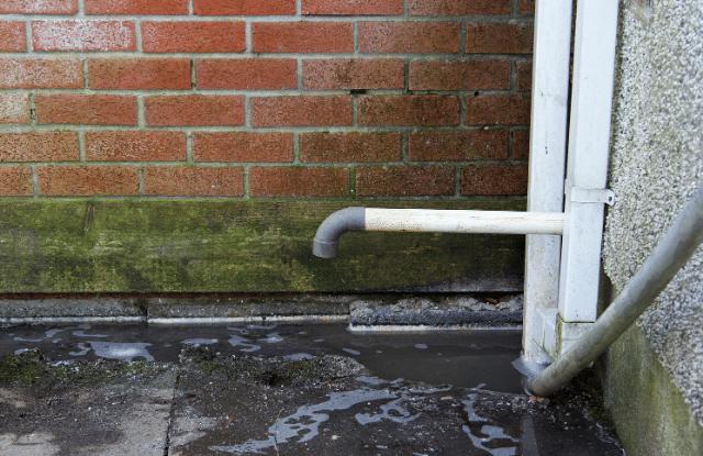blocked water drain