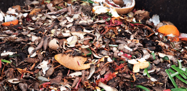 Mix of greens and browns for the perfect compost pile