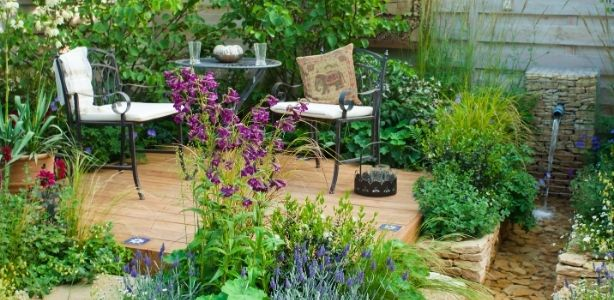 Patio surrounded by plants