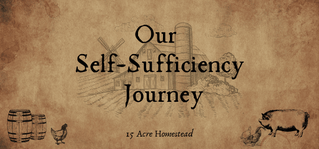 self-sufficiency journey featured image