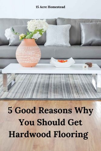 Are you ready to upgrade your home? Have you considered hardwood flooring? Here are 5 reasons you may want to consider doing so.