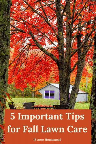 Use these tips and suggestions to complete your fall lawn care this season in preparation for winter.