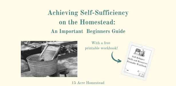 achieving self-sufficiency featured image