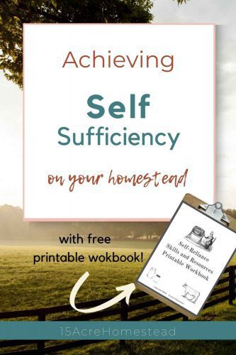 Are you wanted to achieve a new level of self-sufficiency? It is not modern skills you should be learning then. It is the skills of yesterday that you must learn. Find out why and how to get started here.
