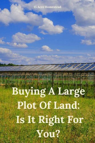 Have you recently bought a large plot of land to homestead on? Here are some simple tips and suggestions to help you figure out what to do with all that land.
