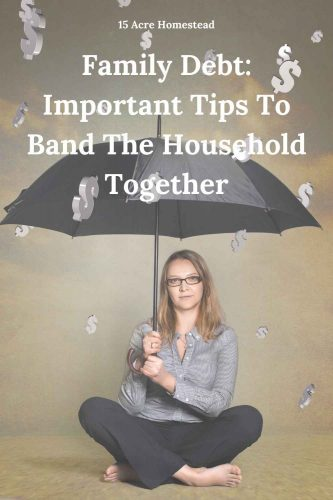 Helping your family eliminate some of the burdening family debt is not so difficult when you use these tips and suggestions.
