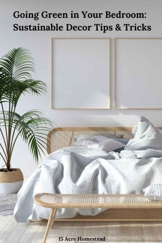 Take these simple tips and suggestions for going green in your bedroom to create the bedroom of your dreams.