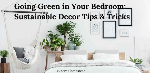 Going Green in Your Bedroom featured image