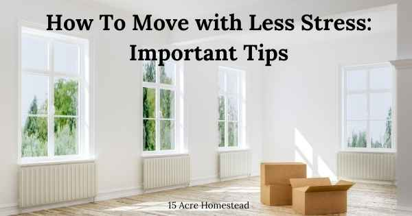 move with less stress featured image