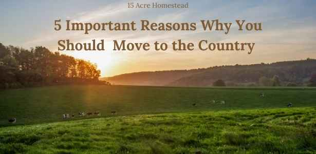 feature post for move to the country