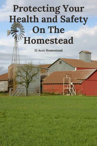 Learn how to ensure the health and safety of you and your family on the homestead with these tips and suggestions.