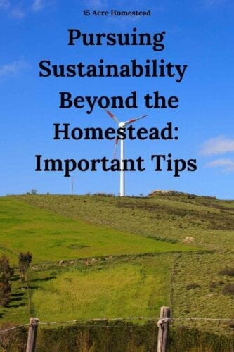 You can achieve sustainability beyond the homestead by following these important tips and suggestions and help to contribute to a better future for us all.