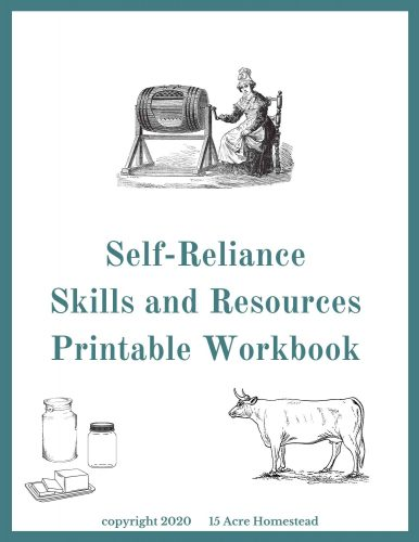 Self-Reliance skills workbook image