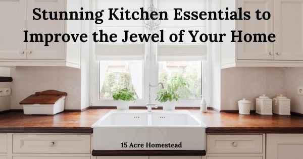 Kitchen essentials featured image