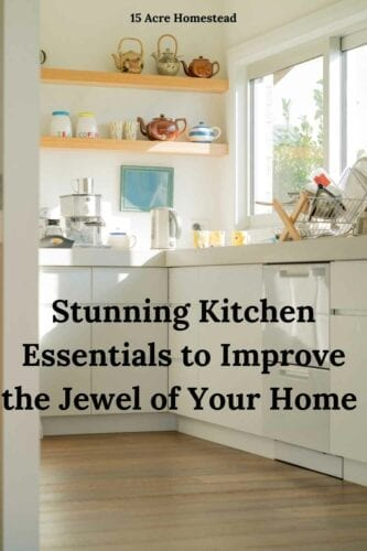 Take the suggested kitchen essentials listed here and make your kitchen an updated and wonderful part of your home again.