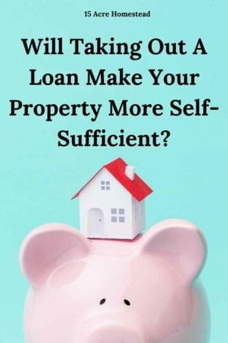 "Virtually anyone who has tried to homestead has entertained taking out a loan. While ""living off the fat of the land"" sounds like a great idea in principle, actually making it happen on the ground in practice is tremendously difficult."