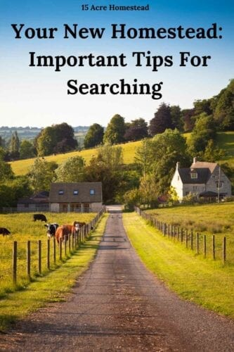 Looking to purchase a new homestead soon? Use the suggestions and recommendations here to get started in a positive manner.