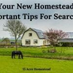 new homestead featured image