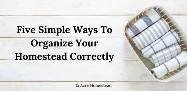 organize your homestead featured image