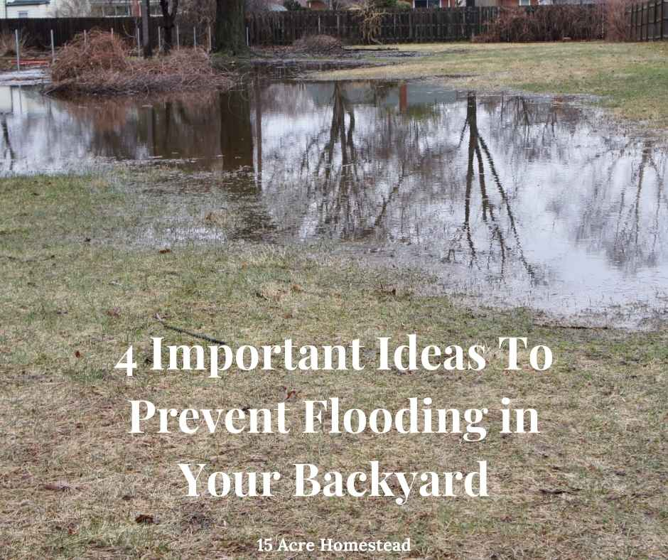 4 Important Ideas To Prevent Flooding in Your Backyard