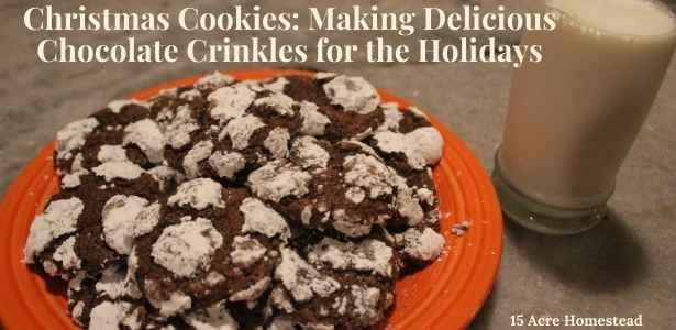 Featured image for Christmas Cookies