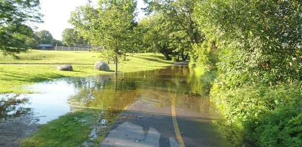 Flooded street and yard