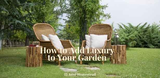feature image for add luxury to your garden