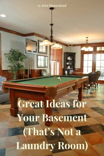 Thinking of remodeling your basement? Here are some great ideas for your basement to try.