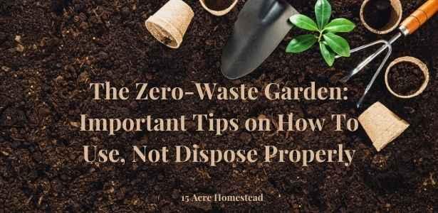 Zero-waste garden feature image