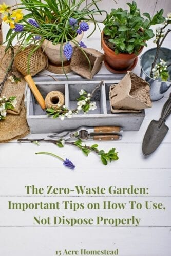 Adding a zero-waste garden is a healthy practice for both the foods you eat and the environment. Learn more about how to create a zero-waste garden here