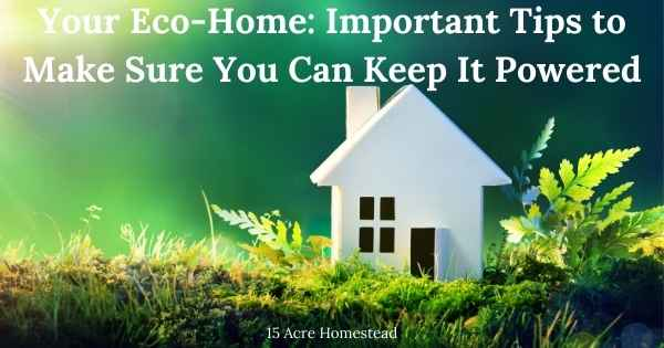 eco featured image