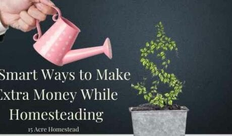 make extra money featured image