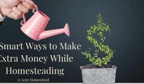 make extra money featured image