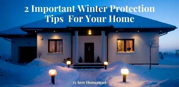 protection tips featured image
