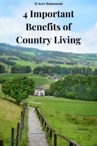 Are you tired of the fast-paced life of city living? Check out these 4 benefits of country living and see if this a change you should be making.