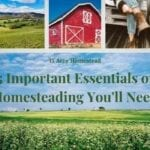 important essentials of homesteading featured image
