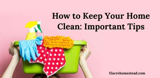 Keep your home clean featured image