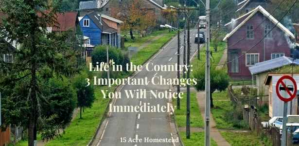 life in the country featured image