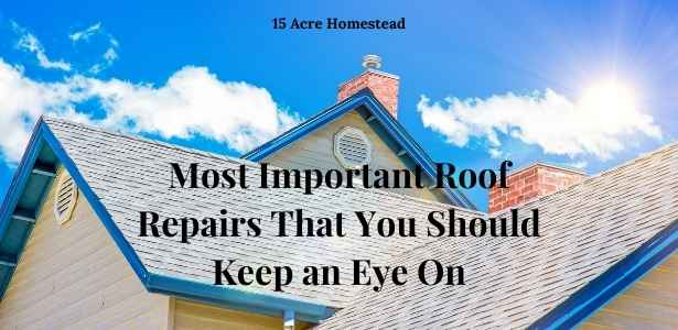 roof repairs feature image
