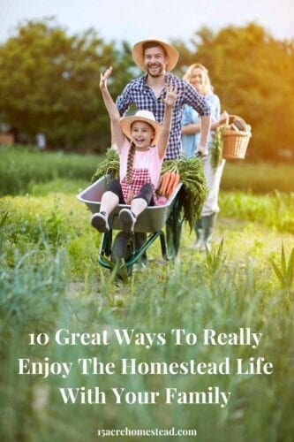 Take a look at these ten ideas to see if they inspire you to really enjoy the homestead life.